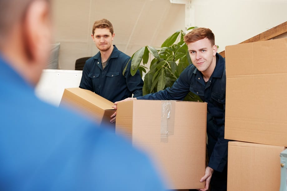 Employing Family and Friends in My Removal Company